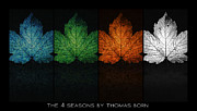 Thomas Born Acrylic Prints - The 4 Seasons By Thomas Born Acrylic Print by Thomas Born