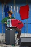 Joe Cashin - The accordion Player