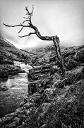 Glen Etive Prints - The accusing finger Print by John Farnan