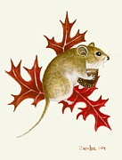 Lori Ziemba Framed Prints - The Acorn Mouse Framed Print by Lori Ziemba