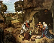 Animals At Christmas Posters - The Adoration of the Shepherds Poster by Giorgione - L Brown
