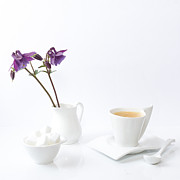 Columbine Photos - The Afternoon Espresso by Constance Fein Harding