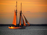 Vineyard Haven Prints - The Alabama at Sunset Print by CapeScapes Fine Art  Photography