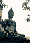 Temple Sculpture Prints - The ancient city of Ayutthaya Print by Thosaporn Wintachai