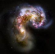 Hubble Posters - The Antennae Galaxies - NGC 4038-4039 Poster by Nicholas Burningham