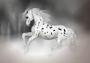 Kelly Digital Art Posters - The Appaloosa Poster by Valerie Anne Kelly