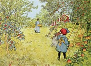 Fresh Green Painting Posters - The Apple Harvest Poster by Carl Larsson