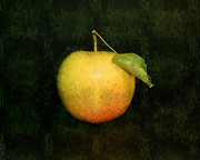 Apple Art Pyrography Posters - The Apple Poster by Linda Veit