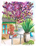 Roofs Paintings - The Arboretum Gift Shop in Arcadia-California by Carlos G Groppa