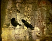 Crow Collage Prints - The Argument Print by Gothicolors And Crows