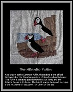 Parrot Art Mixed Media - The Atlantic Puffin by Barbara Griffin