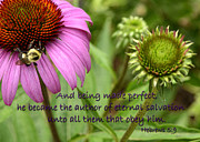 Inspirational Note Cards Posters - The Author of Salvation Poster by Larry Bishop