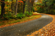 Autumn Landscape Metal Prints - The Autumn Road Metal Print by Bill  Wakeley