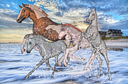 Paint Foal Metal Prints - The Babysitter Metal Print by Betsy A Cutler East Coast Barrier Islands