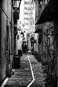 Spyros Papaspyropoulos  - The back alley