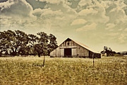 Farming Barns Posters - The Barn 2 Poster by Cheryl Young