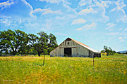 Farming Barns Prints - The Barn Print by Cheryl Young