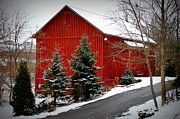 Photographs With Red. Prints - The Barn In Wintertime Print by Jeanne Geidel-Neal