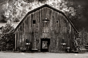 Barn Storm Prints - The Barn Print by Susan Arthur