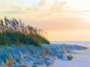 Sea Oats Photo Prints - The Basket Print by JC Findley
