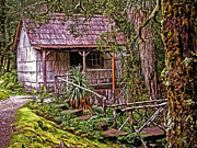 Bath-house Photos - The Bath House in the garden of Waldheim Chalet at Cradle Mountain by Tony Crehan