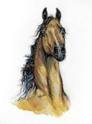 Bay Horse Drawings - The Bay Arabian Horse 13 by Angel  Tarantella