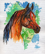 Horse Drawing Painting Prints - The Bay Arabian Horse 19 Print by Angel  Tarantella