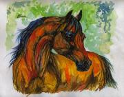 Horse Drawings - The Bay Arabian Horse 3 by Angel  Tarantella