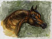 Bay Horse Drawings - The Bay Arabian Horse by Angel  Tarantella