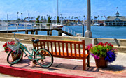 Wood Bench Prints - The Beach Cruiser Print by Michael Pickett