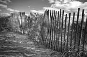 Monochrome Art - The Beach Fence by Scott Norris