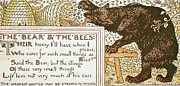Moral Drawings - The Bear and The Bees by Pg Reproductions