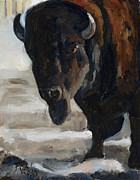 Bison Art - The Bearded One by Billie Colson