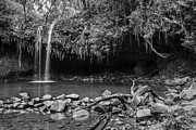 Jamie Pham - The beautiful and magical Twin Falls along the Road to Hana in M