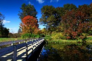 Ithaca Prints - The beautiful autumn in Ithaca New York Print by Paul Ge