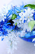Online Flower Shop Prints - The beautiful  blue flower Print by Boon Mee