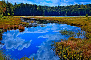 Fir Trees Photos - The Beautiful Cary Lake - Old Forge New York by David Patterson