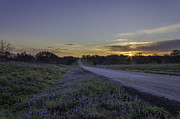 Hill Country Prints - The Beautiful Road at Sunrise Print by Jeffrey W Spencer