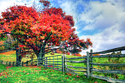 Gate Prints Prints - The Beauty of Fall III - Blue Ridge Parkway Print by Dan Carmichael