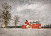 Ohio Red Prints - The Beauty of January Print by Pamela Baker