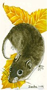 Lori Ziemba Prints - The Beech Mouse Print by Lori Ziemba