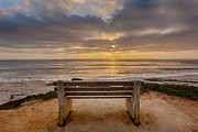 Diego Framed Prints - The Bench IV Framed Print by Peter Tellone