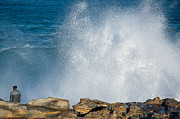 Maroubra Art - The big wave by David Hill