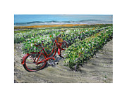 California Vineyard Paintings - The Bike Lane by Gregory Peters