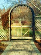 Lattice Painting Metal Prints - The Birch Wood Beyond the Gate Metal Print by RC deWinter
