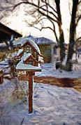 Steve Ohlsen - The Birdhouse - Rural Still Life