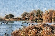 Lorri Crossno Framed Prints - The Birds of White Rock Lake Framed Print by Lorri Crossno