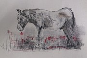 Donkey Pastels Prints - The Birth of Stanley Print by Riaan Van der Merwe