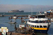 Alcatraz Metal Prints - The Blue and Gold Fleet Ferry Boat At Pier 39 San Francisco California 5D26043 Metal Print by Wingsdomain Art and Photography