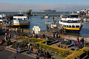San Francisco Bay Posters - The Blue and Gold Fleet Ferry Boat At Pier 39 San Francisco California 5D26044 Poster by Wingsdomain Art and Photography
